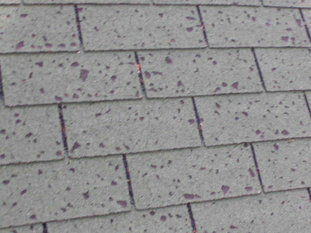 How To Spot Hail Damage On Your Roof A B Edward