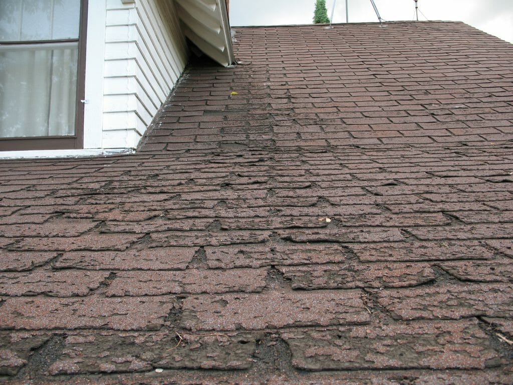 Damaged shingle roof