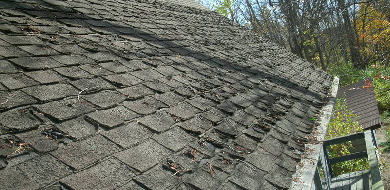damaged roofing shingles chicago