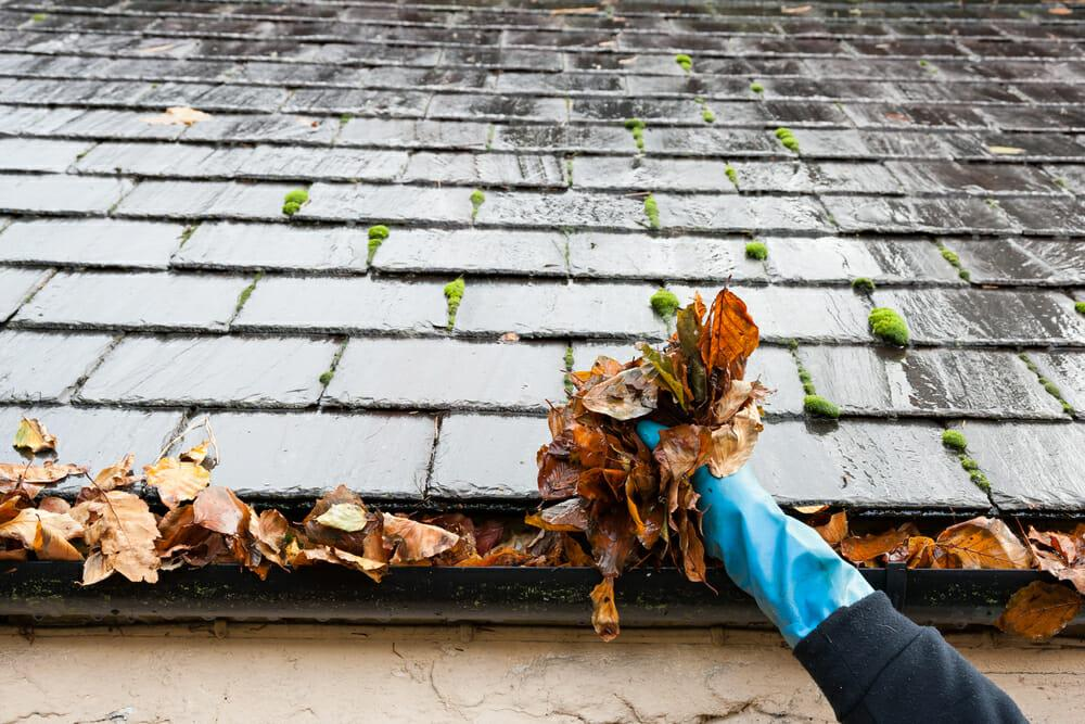 How to Maintain the Exterior of Your Home this Fall