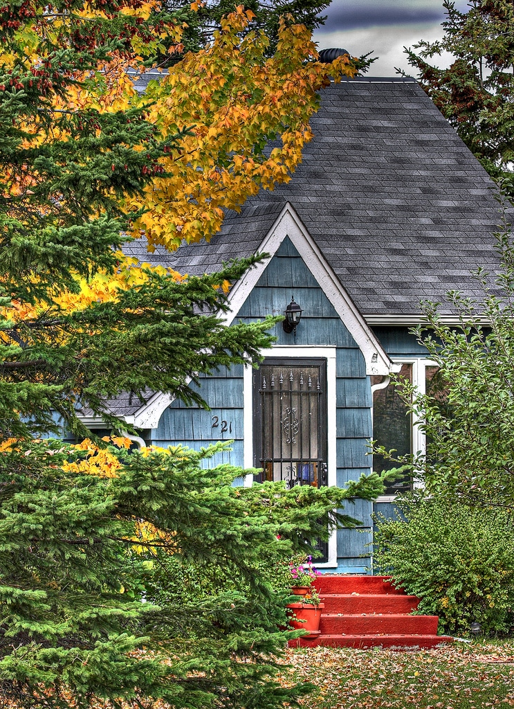 Trees that are too close to your roof can be trouble in high winds and heavy storms