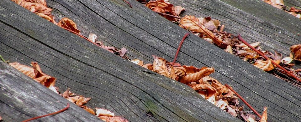 Get your roof ready for fall